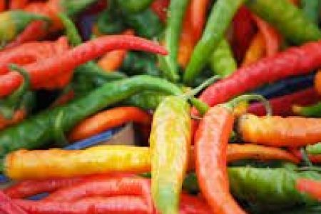 Grow Your Own Organic Salsa Garden